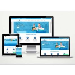 Kuru Temizleme Web Sitesi Paketi Dry v4.5